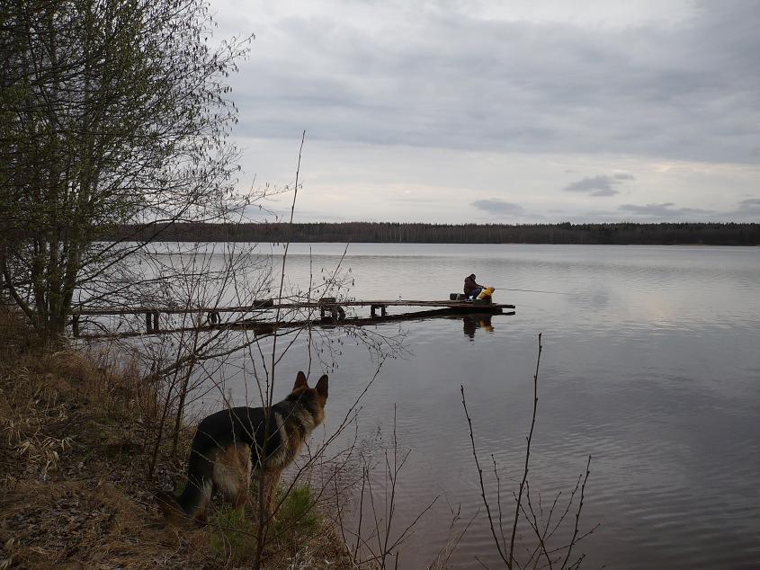 домики для рыбалки в тверской области